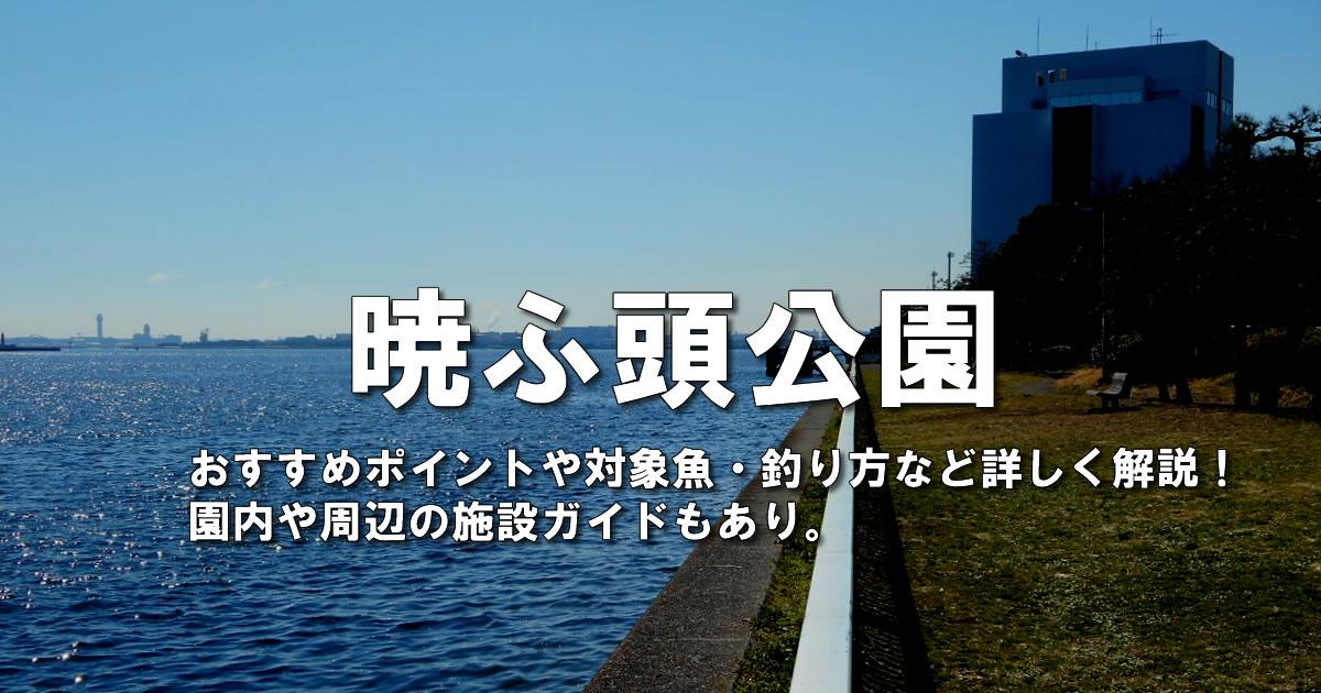 暁ふ頭公園の釣りガイド