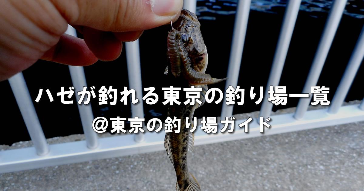 東京都内でハゼ釣りができる釣り場一覧