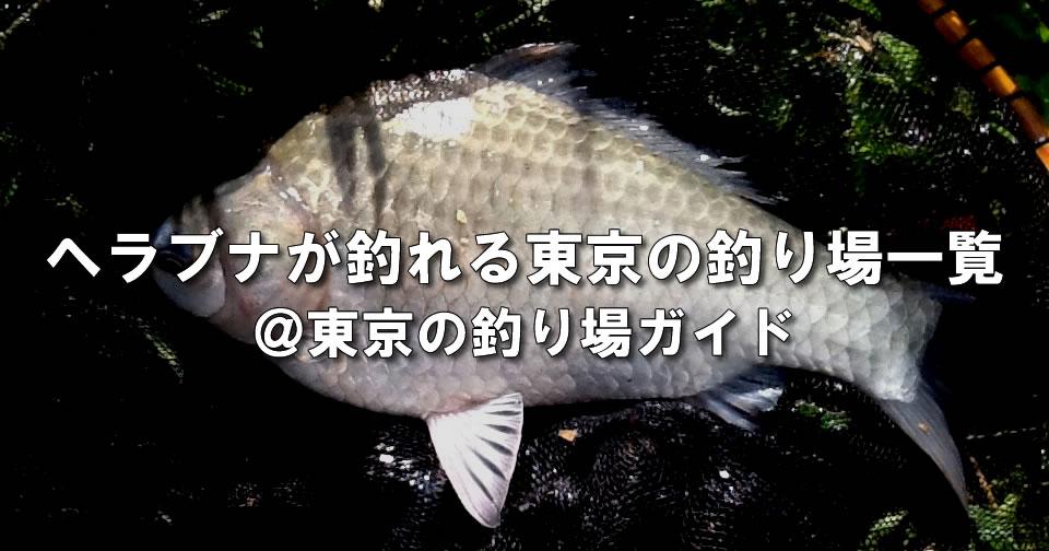 東京都内のヘラブナ釣り場一覧