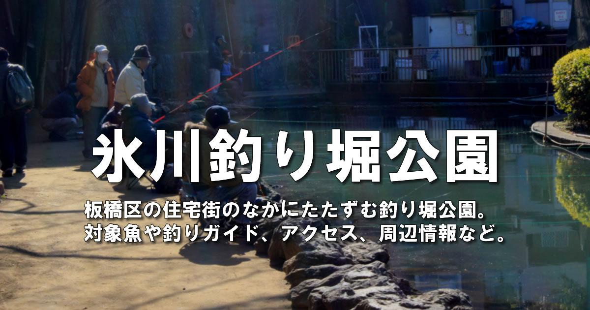 氷川釣り堀公園の釣りガイド
