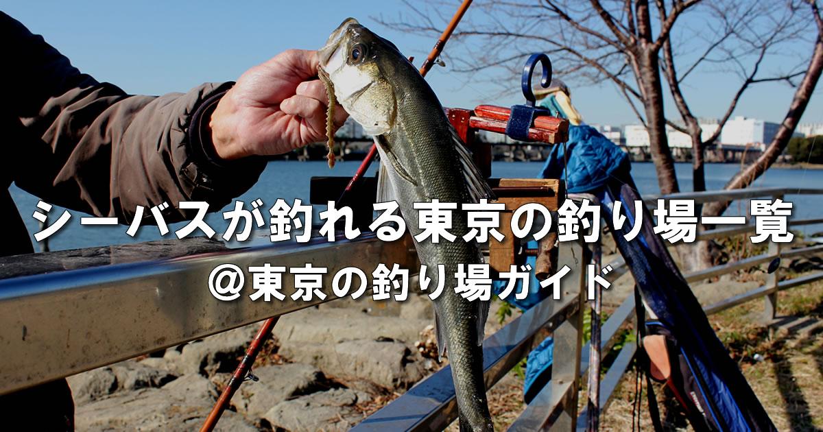 東京都内でシーバスフィッシングのできる釣り場一覧